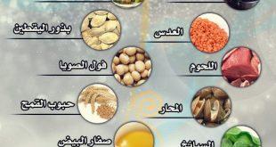 معلومات صحية , اهم معلوة صحية مفيدة عن الاغذية
