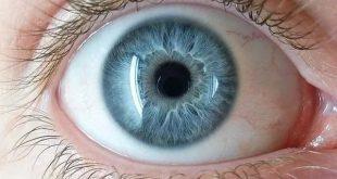 صوره انواع العيون , انواع العيون واسمائها