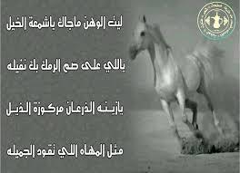 بالصور شعر عن الخيل , اجمل ابيات الشعر تصف جمال الخيل 2758 1