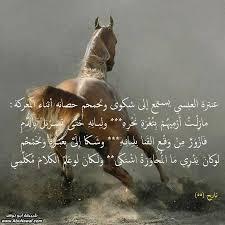 بالصور شعر عن الخيل , اجمل ابيات الشعر تصف جمال الخيل 2758 6