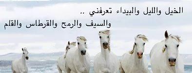 بالصور شعر عن الخيل , اجمل ابيات الشعر تصف جمال الخيل 2758 9
