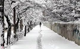 صورة صور الطبيعة الجميلة , اجمل صورة للثلوج وقت التساقط