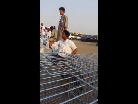 صورة حراج الدمام للاثاث , اسواق الاثاث المستعمل بالدمام
