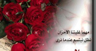 حكم عن الورد , حكمة وشعر جميل عن الورود