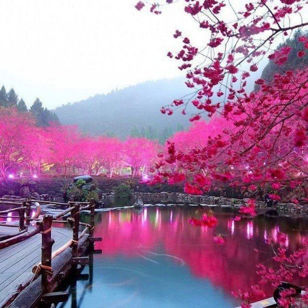 بالصور صور مناظر جميلة , احلى المناظر الطبيعية 4243 4