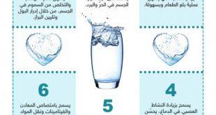 صور فوائد الماء , العديد من استخدمات الماء