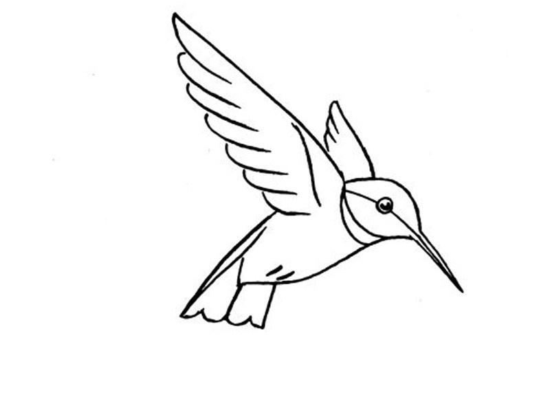 صورة رسم سهل جدا , تعلم رسومات سهلة للاطفال