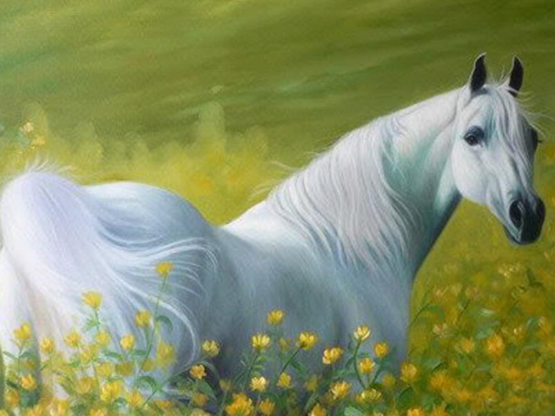 بالصور زمن الخيول البيضاء , صور لخيول بيضاء تحفة