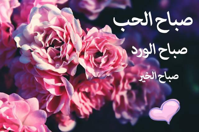 بالصور حبيبي صباح الخير , اجمل صباح الخير لحبيبك 3995 13