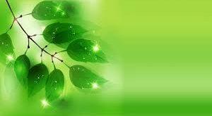 بالصور خلفية خضراء , ماذا يعني لك اللون الاخضر 4057 10 300x165