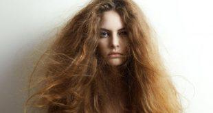 علاج الشعر الجاف , الزيوت المرطبة للشعر الجاف