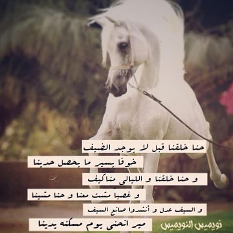 خواطر الشاعر أحمد وائل