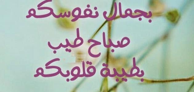 صورة كلمات صباحيه , اجمل صور مكتوب عليها كلمه عن جمال الصباح