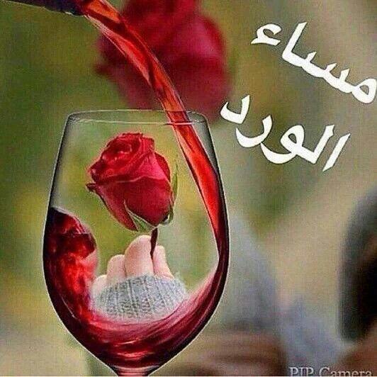 صوره مساء الورد والياسمين , صور مكتوب عليها كلمات مسائيه