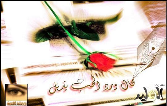 بالصور احلى الصور للواتس , اجمل صورة للواتس اب 1031 4