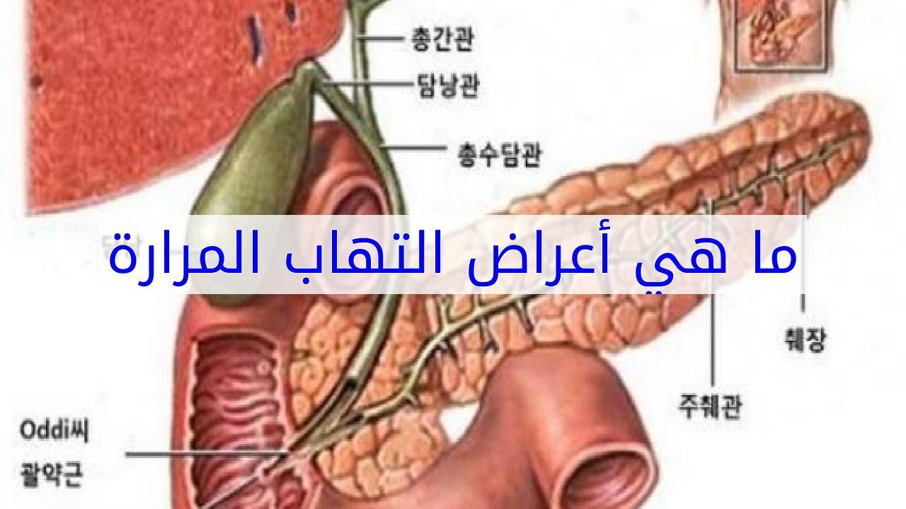 صورة اعراض المرارة , ماهي اعراض المرارة