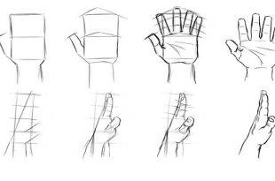 بالصور كيفية الرسم , اسهل طرق تعلم الرسم 1777 3 310x205