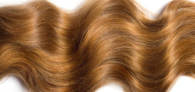 بالصور تطويل الشعر في يوم , اقوى الوصفات لتطويل الشعر فى ايام 465 2