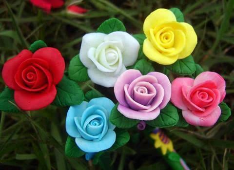 بالصور ورود جميلة , اجمل صور الورود فى العالم 500 4