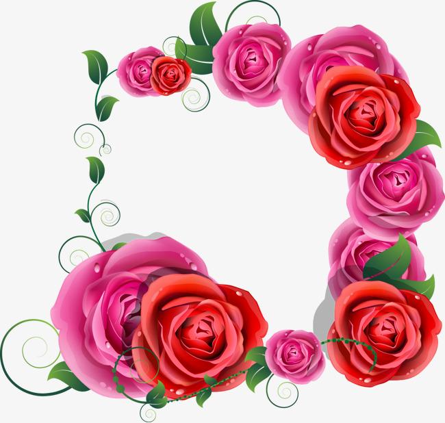 بالصور ورود جميلة , اجمل صور الورود فى العالم 500 9