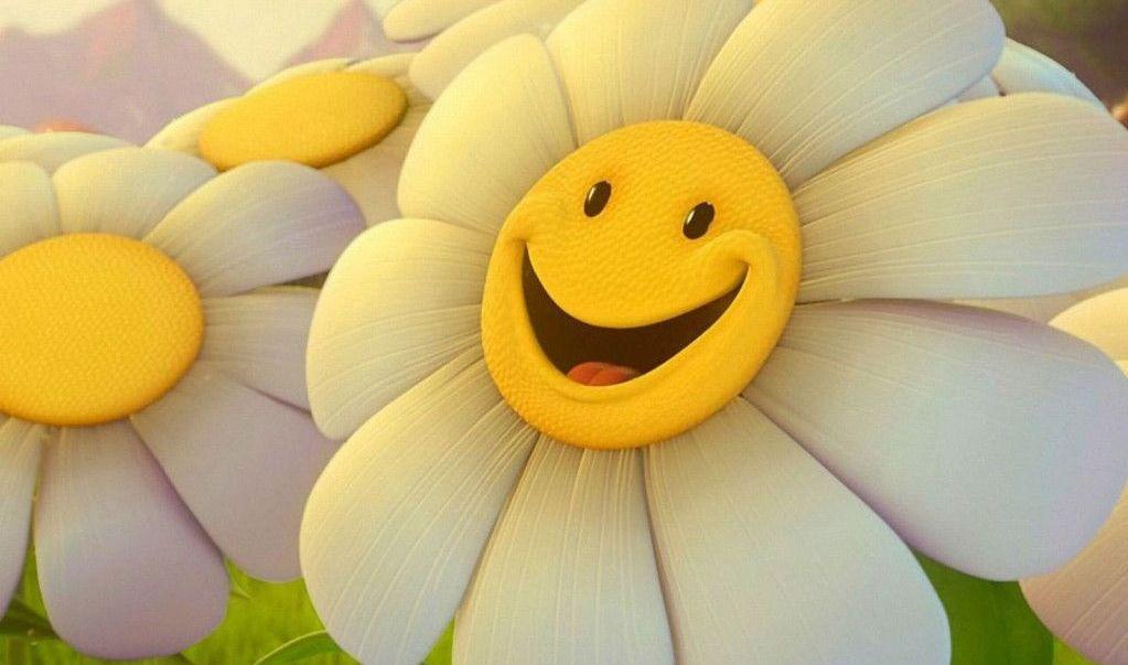 بالصور كلام عن السعادة , عبارات عن مفهوم السعادة 5146 9