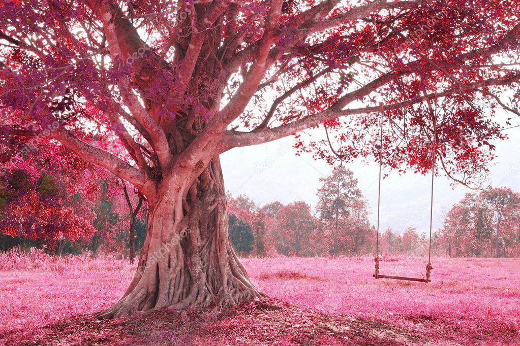 بالصور صور جميلة جدا , صورة جديدة جدا 5410 8