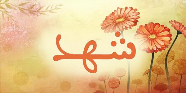 صور ما معنى اسم شهد , توضيح لاسم شهد