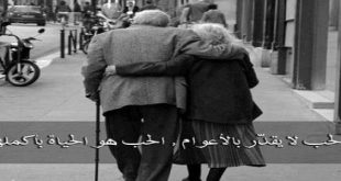 بالصور قصص حب حقيقية , اجمل الكلمات عن الحب الحقيقي 5573 3 310x165