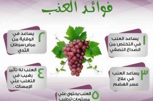 صوره فوائد العنب , اهميه العنب فى حياه الانسان