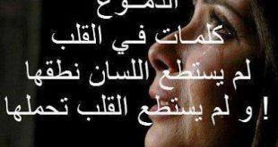 بالصور صور زعل من حبيبي , صالح حبيبك بااجمل الصور 6378 11 310x165