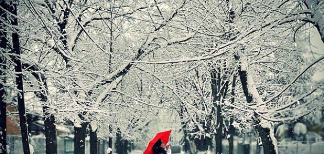 بالصور عبارات عن الشتاء , اجمل الكلمات عن امطار الشتاء 6604 10