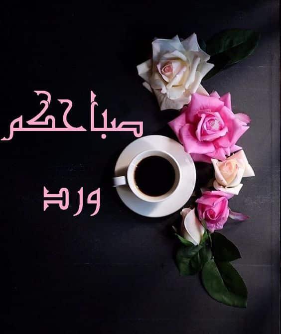 صور صباح الورد حبيبتي , اجمل الصور المكتوب عليها كلمات صباحيه