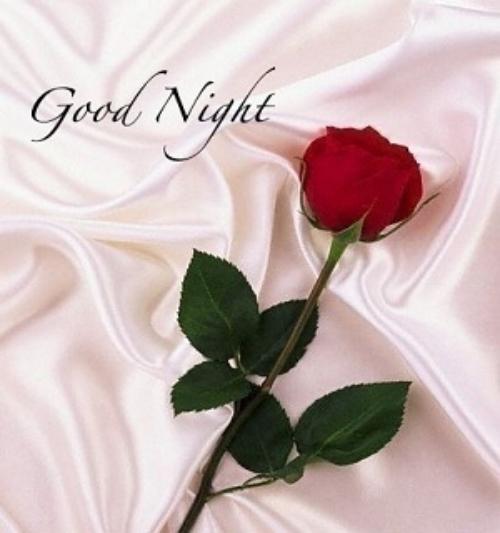 بالصور مساء الورد شعر , اجمل الاشعار المعبره عن المساء 740 15