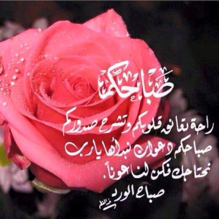 بالصور كلمات من ورود , اروع صور الورد المكتوب عليها عبارات جميلة 746 11