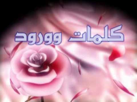 بالصور كلمات من ورود , اروع صور الورد المكتوب عليها عبارات جميلة 746 8