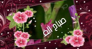 صورة صباح الورد والفل , اروع الصور مكتوب عليها كلمات صباحيه
