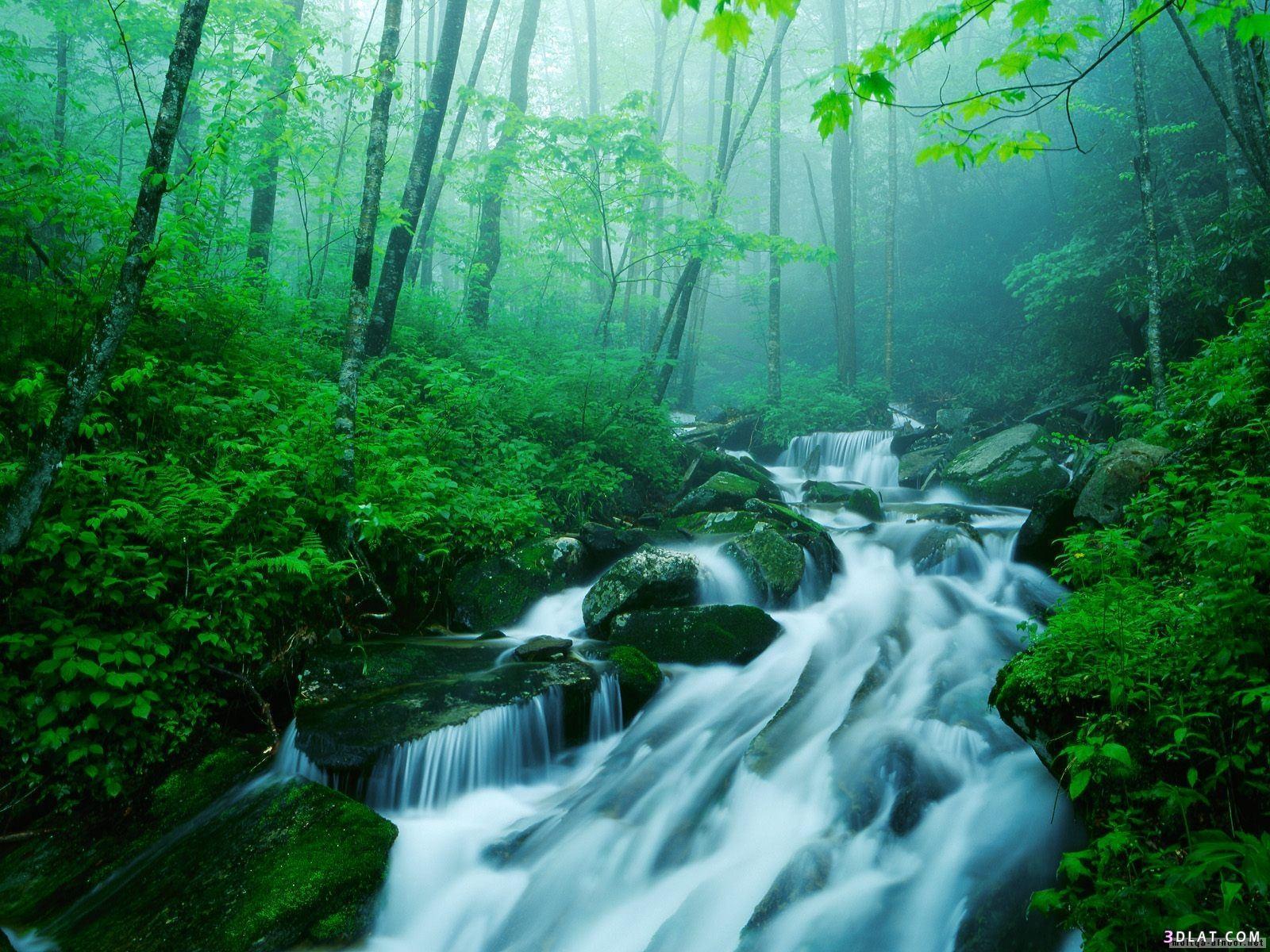 بالصور خلفيات الطبيعة , اروع المناظر الخلابه بالصور 857 6