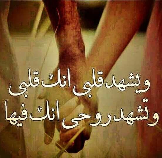 بالصور اجمل الصور للحبيبين , اجمل صوره معبره عن الحب للحبيبين 898 4
