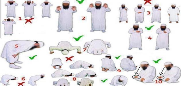 بالصور الطريقة الصحيحة للصلاة , كيفيه الصلاة الصحيحة 920