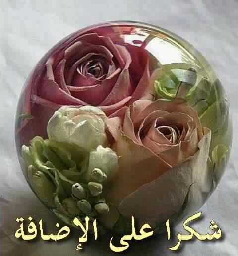 بالصور شكرا على قبول الصداقة , صور فيسبوك شكرا لقبول الصداقة