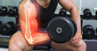 صورة كم عدد عضلات جسم الانسان , تعرف على عدد عضلات الجسم للانسان