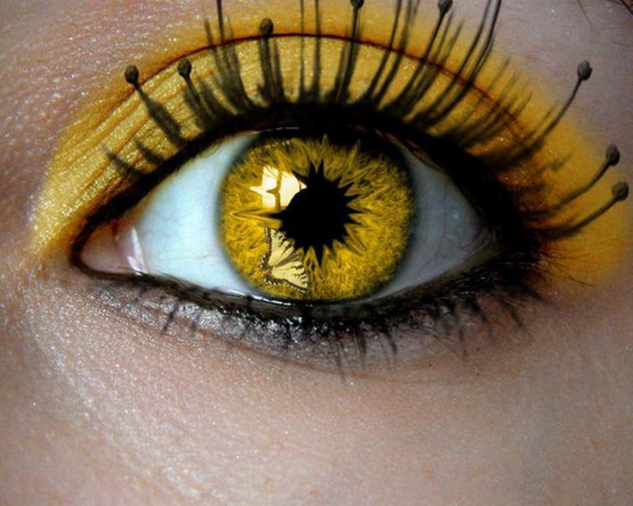 بالصور صور عيون عسليه , صور اجمل عيون عسلي 1377 8