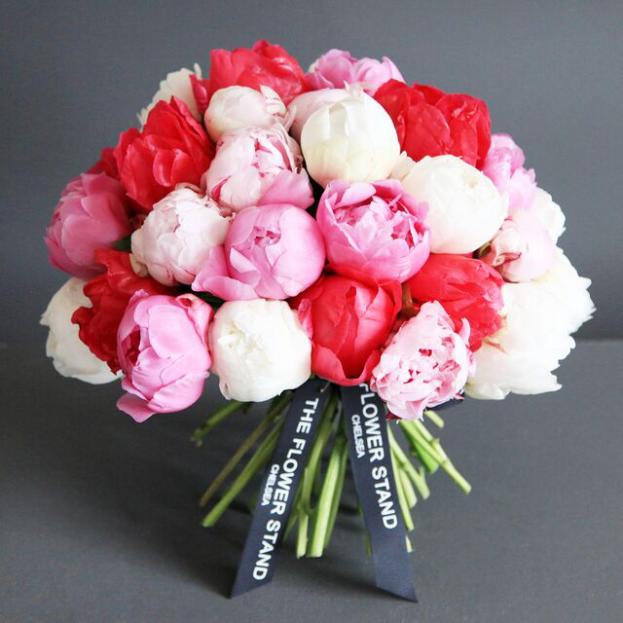 بالصور اجمل صور ورد , اجمل زهور لبوستات الحب 1444 1