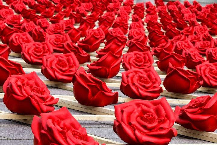 بالصور اجمل صور ورد , اجمل زهور لبوستات الحب