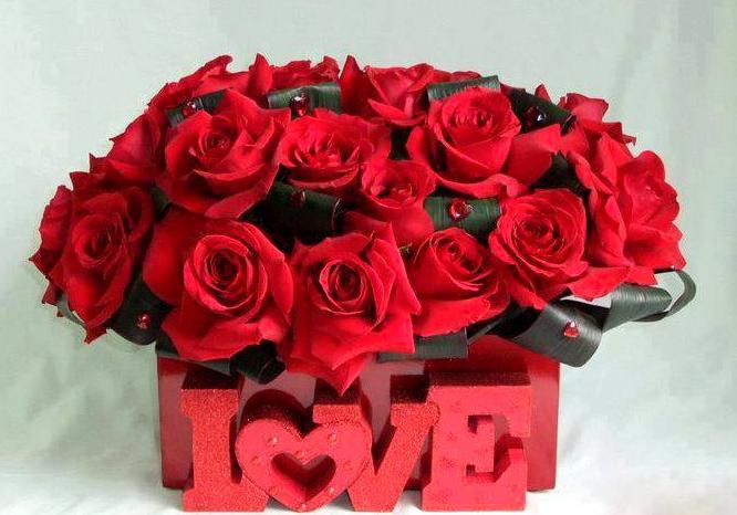 بالصور اجمل صور ورد , اجمل زهور لبوستات الحب 1444