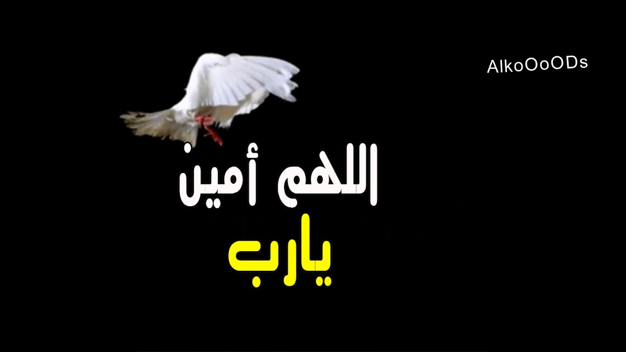 بالصور صور اللهم امين , صور كومنتات اللهم امين يارب العالمين 1446 5