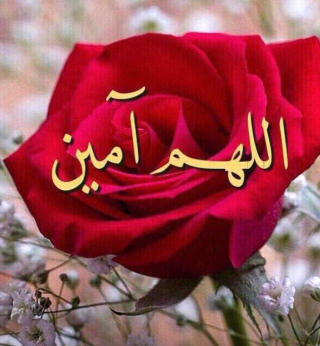 بالصور صور اللهم امين , صور كومنتات اللهم امين يارب العالمين 1446