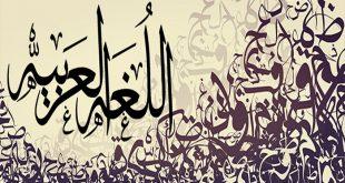 صور معاني الكلمات عربي عربي , تحميل قاموس اللغة العربية