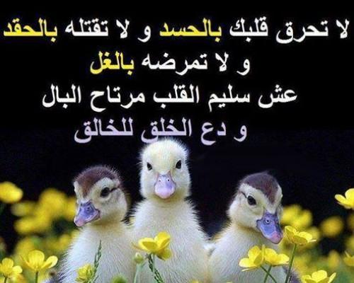 بالصور الحسد والعين , العين و اقوي كلمات عن الحسد 2011 10