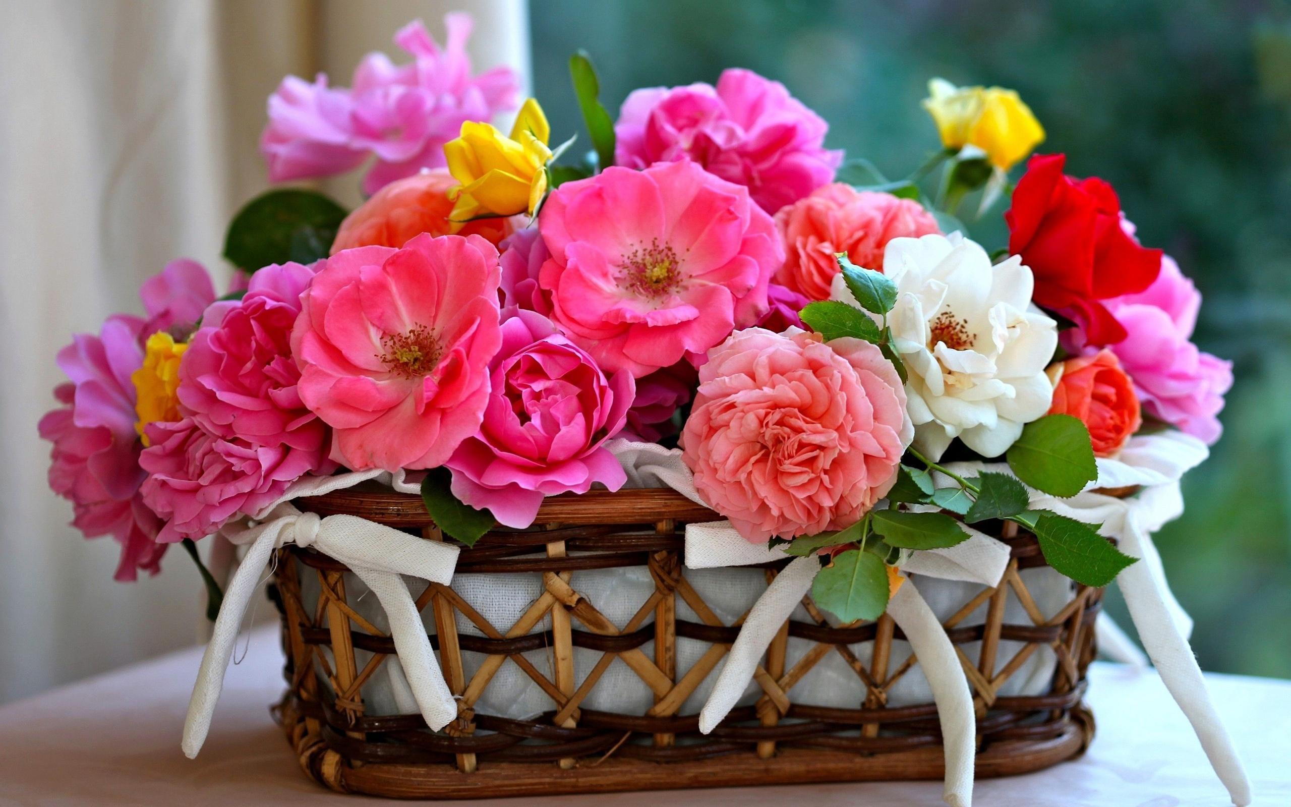 بالصور اجمل بوكيه ورد , اجمل الورود 2019 3254 8